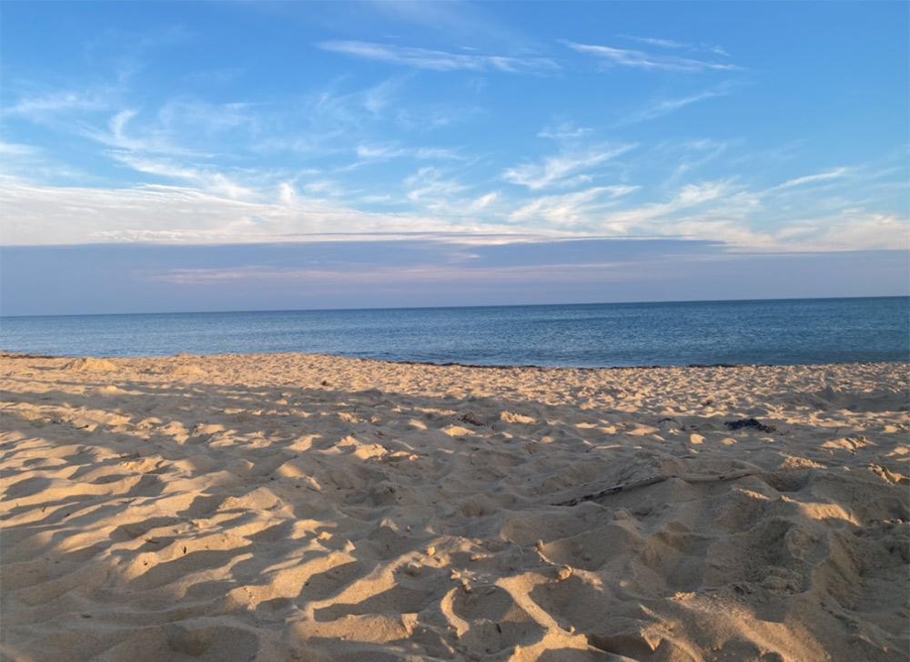 Sandy landscape